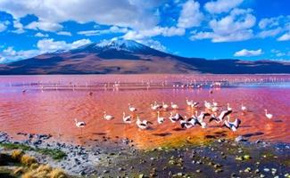 Los lugares más románticos del mundo