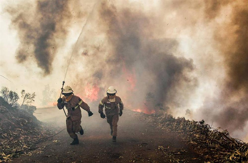 Infierno en Portugal, uno de los peores incendios de la historia0