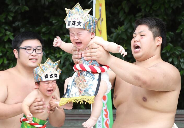 Competición especial en Japón: gana el niño quien llore más fuerte