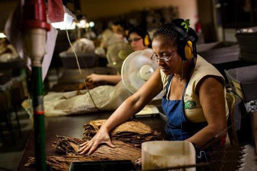 China y Cuba firman acuerdo de cooperación en la industria tabacalera