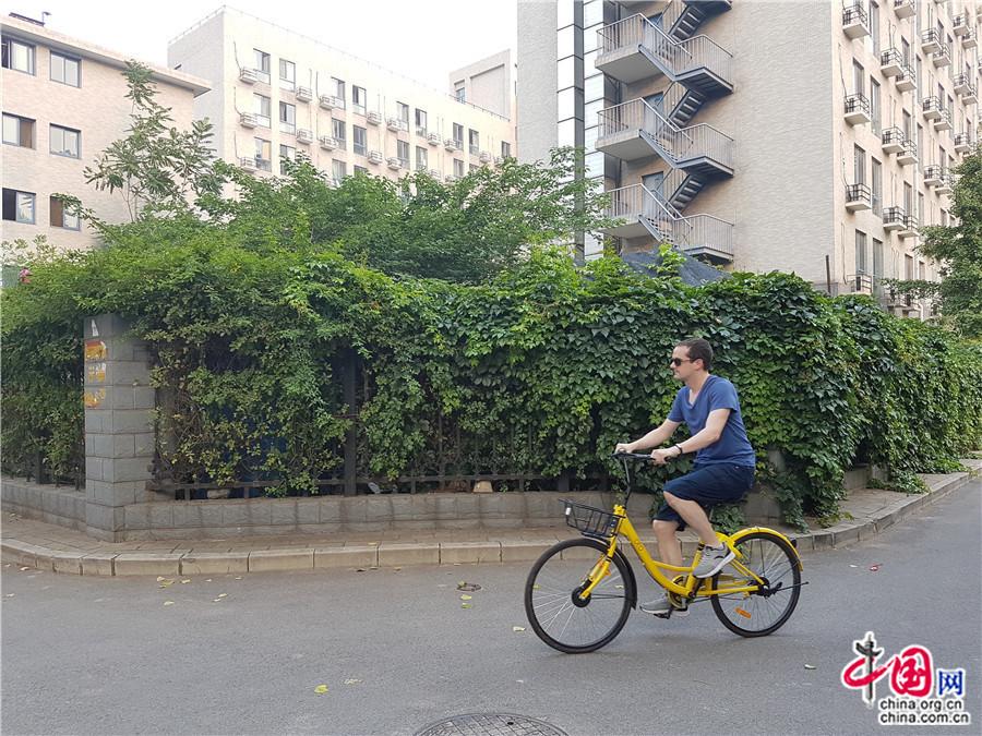 Bicicletas compartidas: Entre la conveniencia y el desorden