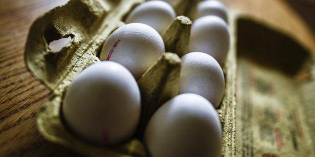 Primeros arrestos en Holanda por caso de huevos contaminados