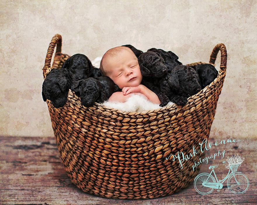 Una mujer y su perro tuvieron bebés el mismo día, así que hicieron una sesión de fotos adorable