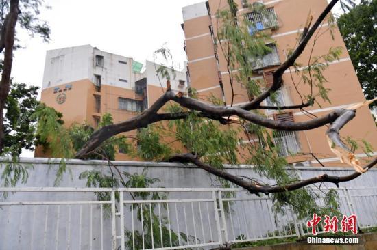 China emite alerta naranja por tifón Talim.