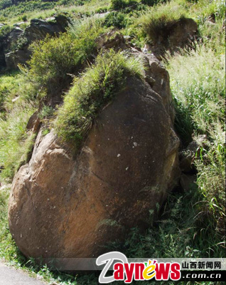 The largest stromatolite so far discovered in China as shown in this photo published on August 25. [Photo: Daynews.com]