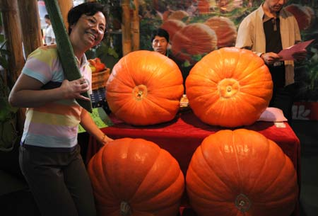 A visitor poses for photos with big pumpkins at the 2008 Kunming International Agriculture Exposition in Kunming, southwest China's Yunnan Province, Sept. 4, 2008. Green food and pollution-free vegetables are customers' favorite at the Exposition held along with the 2008 Kunming International Flower Exhibition. [Xinhua]