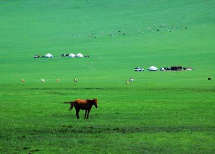 The Xinjiang Uygur autonomous region is continuing with efforts to save the Bayanbulak Grasslands, China's second biggest.
