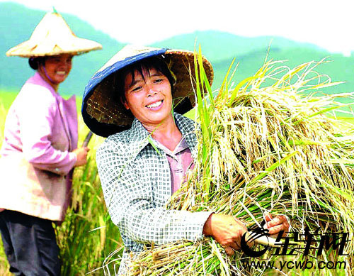 The theme of the upcoming Third Plenary Session is rural reform and development.