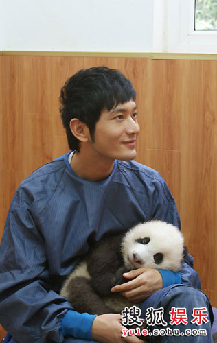 Huang Xiaoming poses for a photo with a panda cub in his arms.