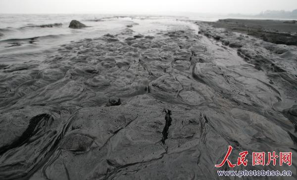 Thousands of tons of 'black water' are discharged into Lake Chao every day.