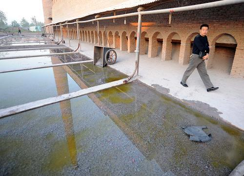 An illegal factory operating in Jiangxintai Village, Jianli County, Hubei Province was closed by the authorities on October 14, 2008. Waste water from the factory had contaminated ground water in the area and blighted thousands of hectares of farmland. [Xinhua]