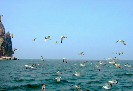 A file photo of the Bohai Sea in north China