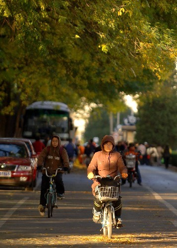 Beijingers wear thick clothes to resist the cold gusts of winds on Thursday, October 23, 2008. [Photo: Xinhua]