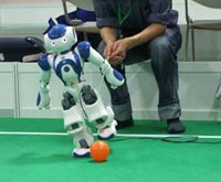 Robots competition concludes in Guangdong
