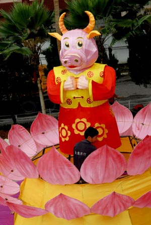 A worker displays an ox-shaped lantern inside a temple in Kuala Lumpur, Malaysia, Jan. 2, 2009. The lantern is displayed here as a kind of decoration to greet the Chinese lunar New Year, or the Year of Ox, which will start from Jan. 26 this year. (Xinhua/Chong Voon Chung)