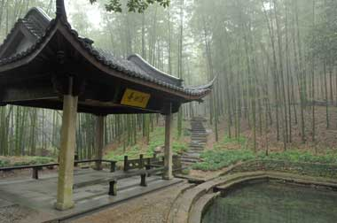 Walking along the path, visitors can come across the pond called the 'mind-purifying pond'. [Shanghai Daily]