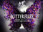 Chinese musical 'Butterflies' staged at Beijing