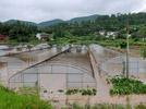 Rainstorm strikes SW China's Sichuan