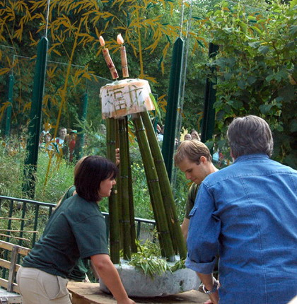 Zoo keepers prepare a birthday cake for giant panda Fu Long at the Schoenbrunn zoo in Vienna, capital of Austria, August 23, 2009.