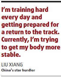 Liu still beloved despite troubled year