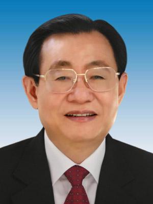 Wang Gang Net Worth