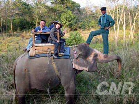 Photo shows tourists riding an elephant in a forest park in Nepal. (Photo Source: CNR.cn))
