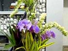 Flower arranging is an art