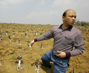 Continual drought hits SW China