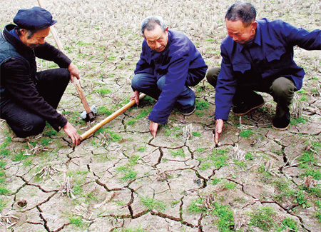 Farmers study the drought situation in Huishan village, Zhongjiang county of Southwest China's Sichuan province, on Monday.[Qiu Haiying/China Daily]