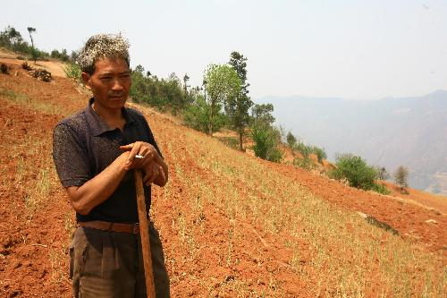 A local farmer looks at dying crop in the field in Shihuitang village of Shiping County, southwest China's Yunnan Province, March 24, 2010. The sustaining severe drought ravaged this region since last October and made no harvest of crops.[Xinhua]