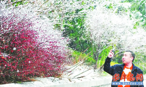 A tourist takes photos at the Jufeng Scenic Zone at Mt. Laoshan, a famous tourist attraction in Qingdao city in east China's Shandong Province on Wednesday, April 14, 2010. [Photo: baodao.cn]