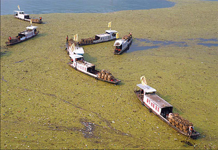 Vessels clean up floating waste and duckweed on the Yangtze River in Fengjie county, Chongqing municipality, in this file photo. [China Daily]