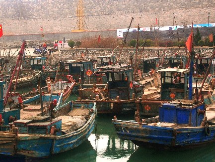Wooden fishing boats docked in an inlet in Penglai. [Photo by Mark Frank]