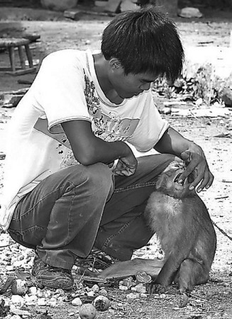 The one-armed monkey and Li Chun. [File photo]
