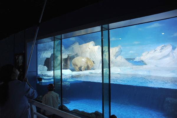 ... Polar Ocean Park in north Chinas Tianjin Municipality. [Xinhua/Wang