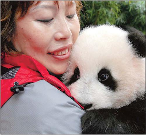 久久热99re1_zoo zoofiliax.org-x videosgratistv另类-japanesefreevideos118-zoofiliaweb vlde暴力 ...