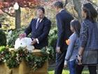 Obama pardons pair of Thanksgiving turkeys