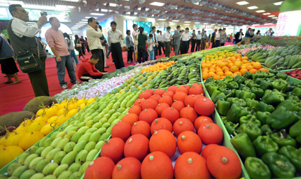 Fruits and vegetables are seen at a tropical agricultural produce trade fair that opened yesterday in south China's Hainan Province. The fair will end tomorrow. As November's CPI soared to 5.1 percent, the rising cost of living is hitting household budgets hard. Food prices in November surged 11.7 percent from a year earlier. [Shanghai Daily]