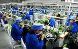 Ningxia St.edenweiss International Enterprise Group Co., Ltd.