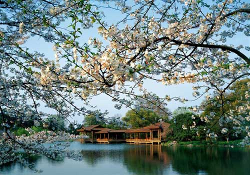 Hangzhou West Lake, one of the 'Top 5 March Destinations in China'by China.org.cn