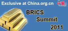 BRICS Summit 2011