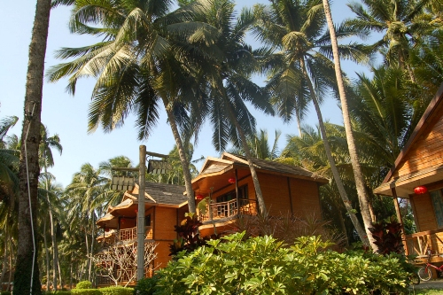 Coconut trees in Wenchang, one of the 'Top 10 must-see attractions in Hainan' by China.org.cn.