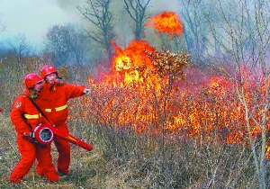 Firefighters work to control a forest fire on Dahinggan Mountains in northeast China's Heilongjiang Province, May 6, 2011.