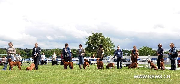 Birmingham Dog Show Society