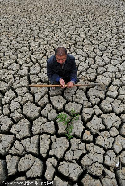 China's worst drought in a half-century is deepening, with more than six million hectares of farmland affected. 