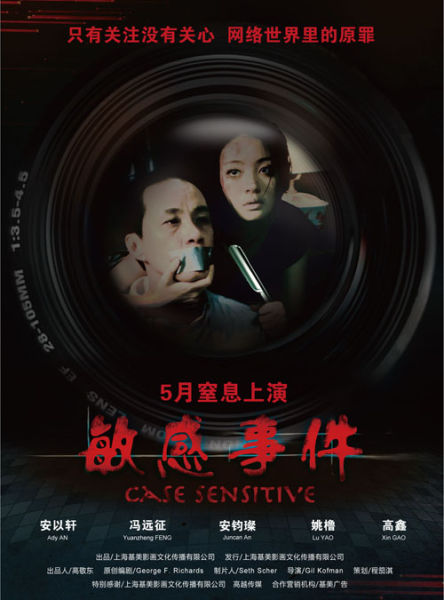 'Case Sensitive' poster