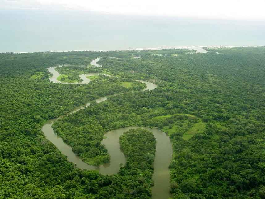 Rainforests in Honduras