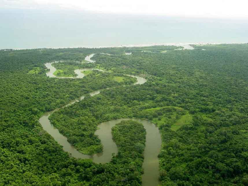 Rainforests in Honduras