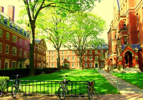 Harvard University One Of The Top 15 Most Beautiful Campuses In World