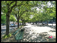 Unter den Linden (under the linden trees). This prestigious wide boulevard connects Berlin's Palace Bridge at the Museum Island with the Brandenburger Gate. The street is lined with impressive historical buildings. [Zhang Fang/China.org.cn]